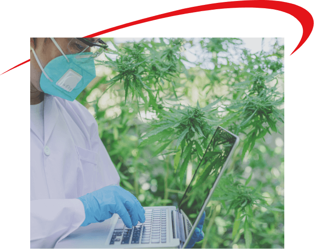 clients-in-legal-cannabis-industry-choose-VBS